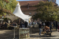 Streuobsttag2018_10